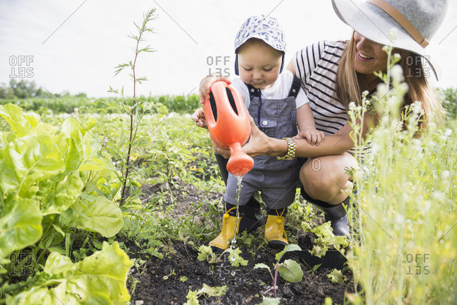 Mother and son watering plants in community garden, Bavaria, Germany