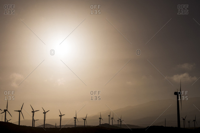 Spain, Tenerife, wind turbines at backlight