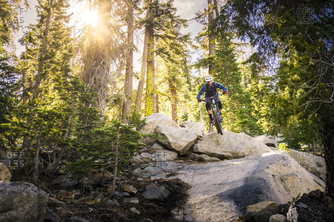Mountain Biker Jumping Over Rocks In Forest