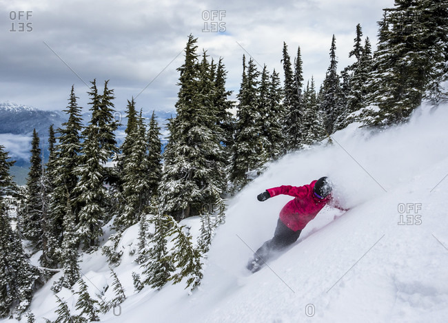 A Girl Descend On Snow While Taking A Turn On Her Snowboard At Whistler Blackcomb