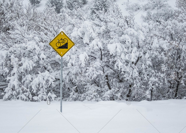 Bright Yellow Sign Among Snow Covered Bushes