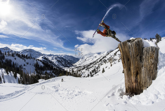 Snowboarder Jumping Over Tree Stump In Utah