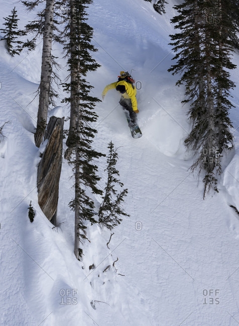 Snowboarder Points His Board Between Trees And Goes Full Speed