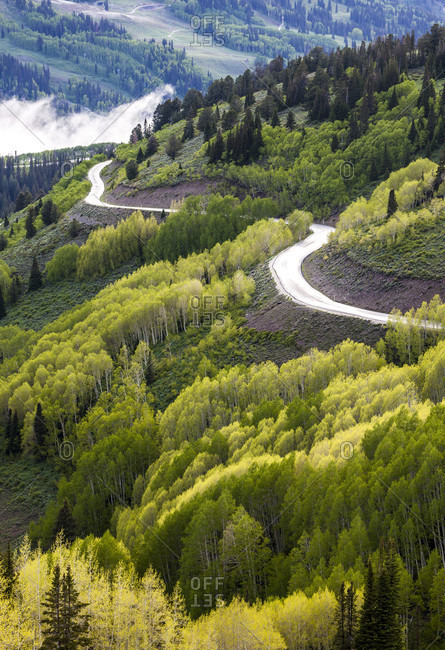 Scenic View Of Guardsman Pass Road During Sunset In Big Cottonwood Canyon