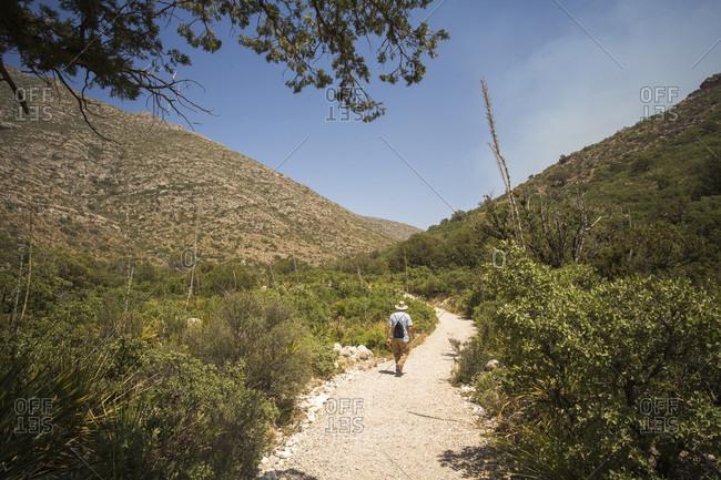 Older Gentleman Hiking On Sandy Trail Near Mckittrick Canyon