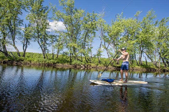 Shirtless Man Paddleboarding Along A Lush Green Shoreline In Maine