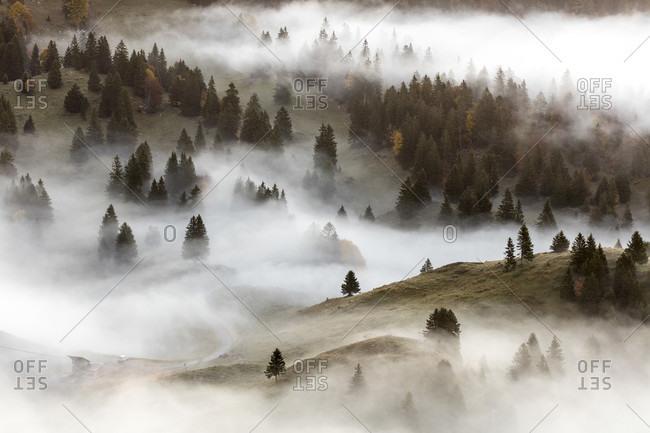 Tree Lined Hills In A Foggy Landscape In Switzerland