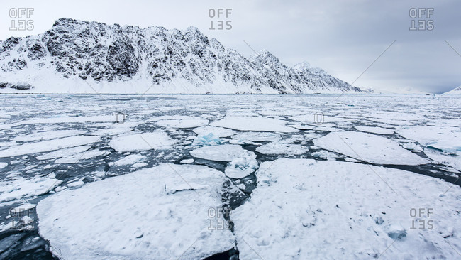 Fragmented Pack Ice On Deep Blue Arctic Sea With Rocky And Slightly Snowy Mountains In The Background