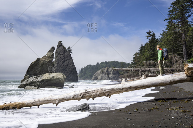 A Woman Standing On A Log On The Shore Of Olympic National Park
