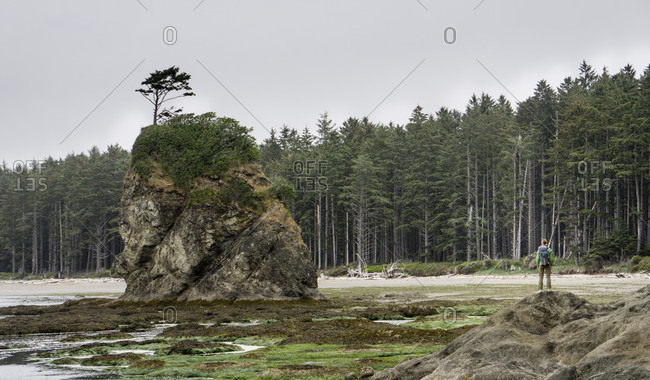 A Woman Standing On Rock During Low Tide In Olympic National Park
