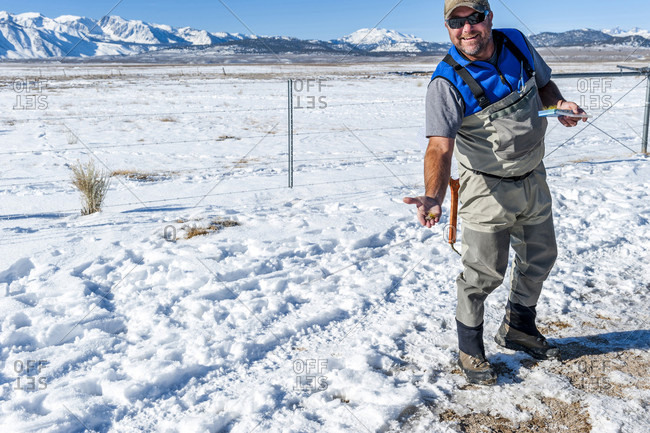 Smiling Fisherman Showing Fly On Hand In Upper Owens River