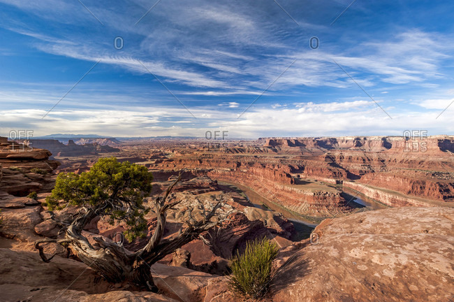 View Of Deadhorse Point Overlook In Utah, Usa