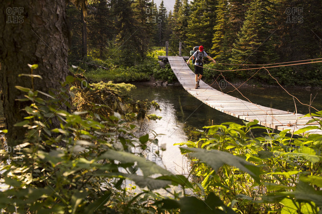 Person Crossing Bridge In Glacier National Park, Montana, Usa