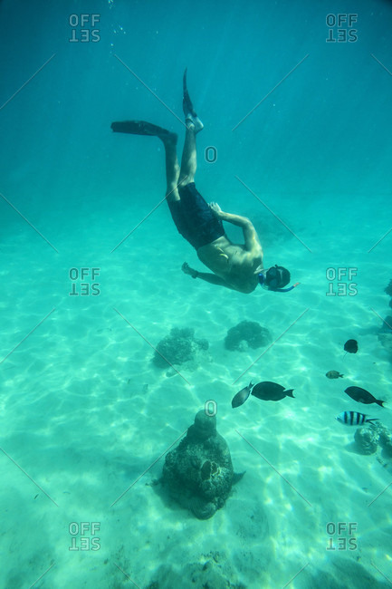 Man Snorkeling In The Ocean Near Buddha Statue