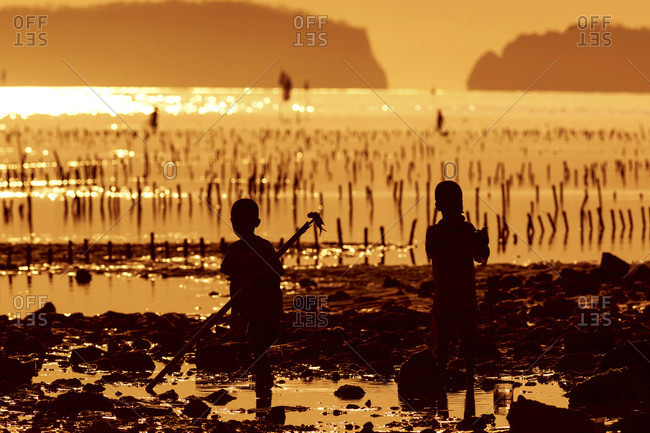 Silhouette Of Children In Seaweed Farm In Sumbawa, Indonesia