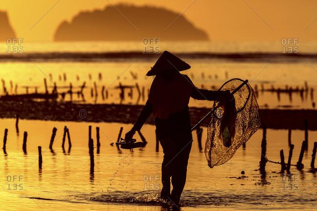 Person Walking In Seaweed Farm Holding Net In Sumbawa, Indonesia