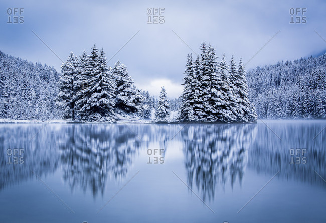Reflection Of Snowy Trees At Two Jack Lake In British Columbia