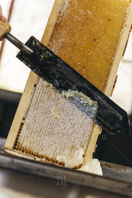 Slicing honeycomb off beehive frame