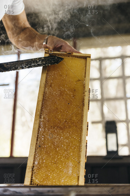 Person using heated knife to cut wax from honeycomb