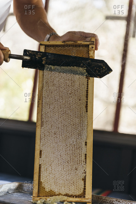 Heated knife being used to cut wax off honeycomb