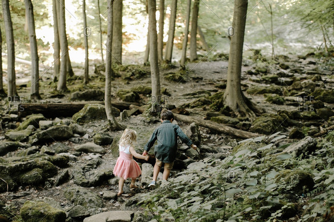 Kids holding hands in forest