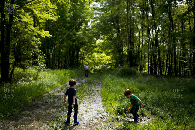 Three kids on muddy forest trail