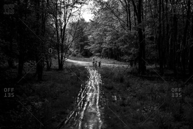 Three kids on wooded trail