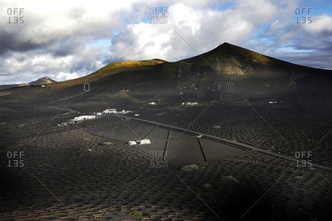 Vineyards in volcanic setting
