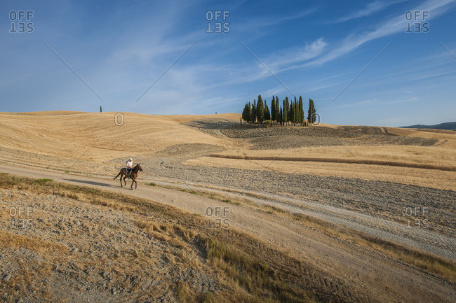 Landscape in San Quirico d'Orcia, Italy
