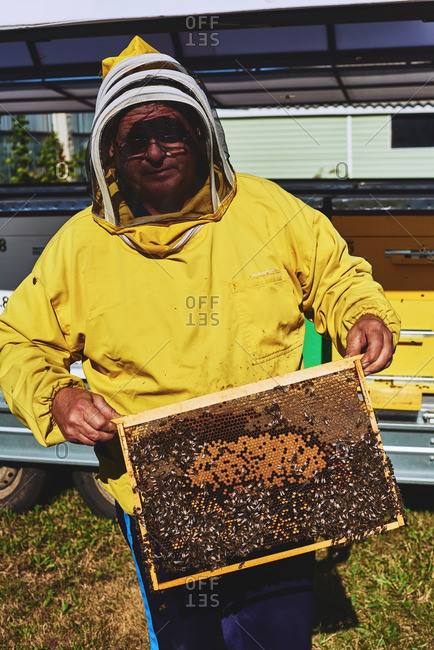 Portrait of beekeeper with honeycomb