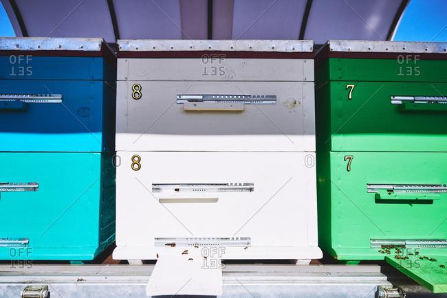 Row of hives at apiary