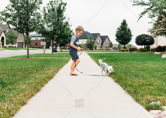 Boy with dog out for walk
