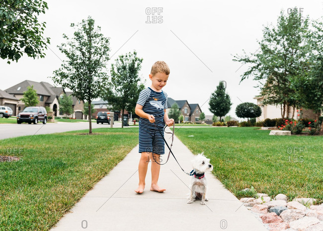 Boy and dog out for a walk