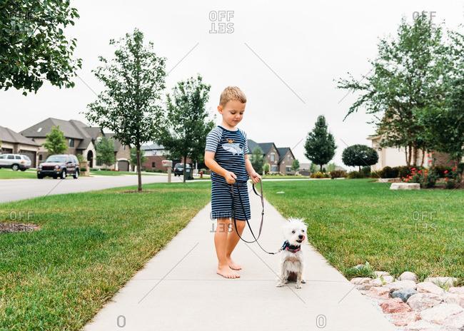 Boy with a dog on leash