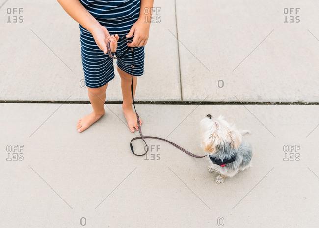 Boy with a dog on a leash