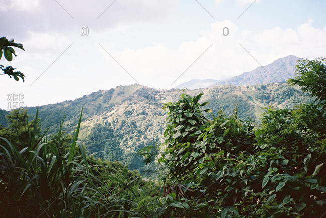 Aerial view of a mountainous jungle