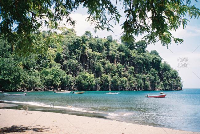 Boats moored along a tropical island cove