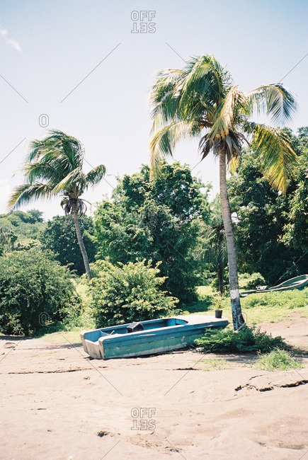 Palm trees and an old boat along a tropical beach
