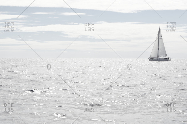 Monochromatic scene of a sailing yacht on the ocean at mid day