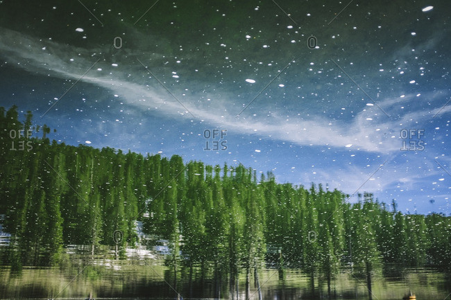Reflection of trees in the water in Mammoth Lakes, California