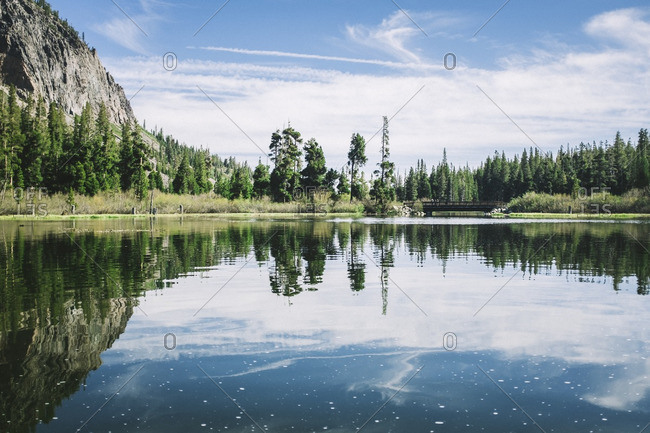 Mountains and woods near Mammoth Lakes, California