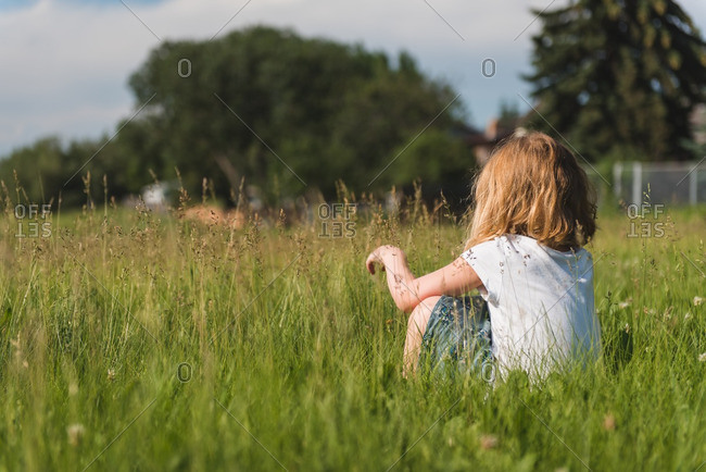 Little girl sitting in a field
