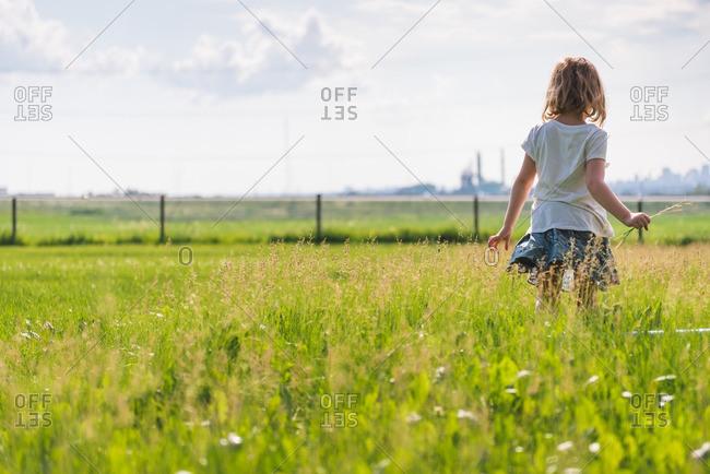 Little girl walking in a field