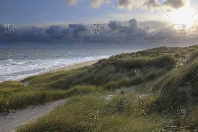 Beach and Dunes, Sylt, North Frisian Island, Schleswig-Holstein, Germany