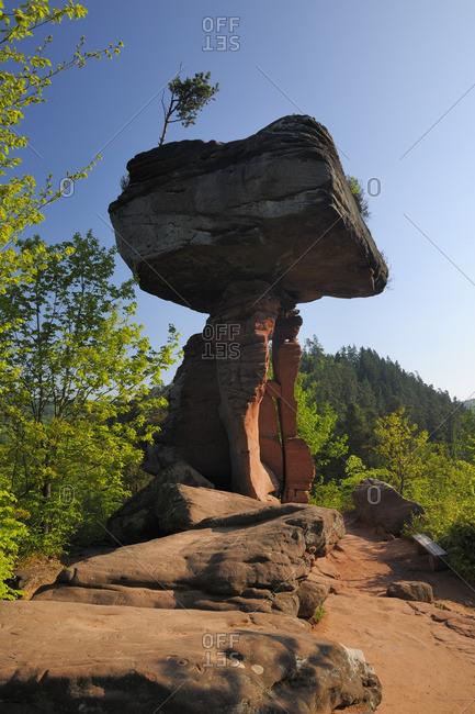 The Devil's Table Rock Formation, Teufelstisch, Hinterweidenthal, Pfaelzerwald, Rhineland-Palatinate, Germany