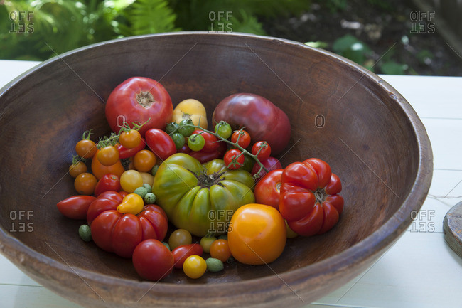Antique Wooden Bowl filled with Variety of Heirloom Tomatoes