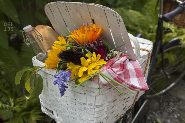Wicker Basket on Back of Bicycle filled with Baguette, Bottle, Tablecloth and Flowers