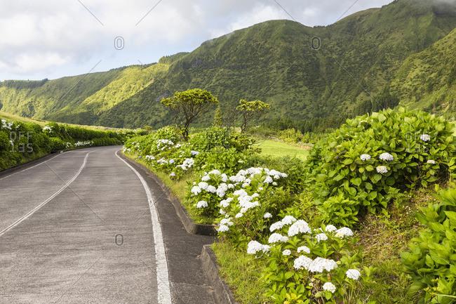 Road by Crater Rim in Caldera of Sete Cidades, Ponta Delgada. Sao Miguel Island, Azores, Portugal