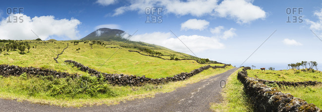 Rural Road and Lava Stone Wall in front of Pastureland and Mount Pico, Pico Island, Azores Portugal
