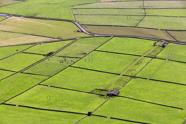 Field patterns of the agricultural landscape seen from Serra do Cume, Terceira Island, Azores, Portugal
